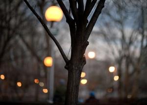 washington square park at dusk